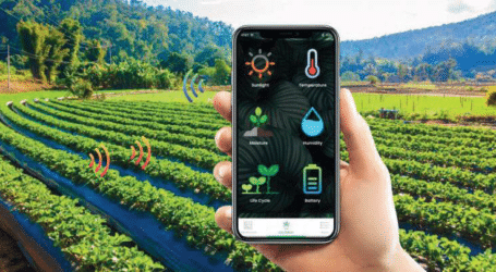 Humans vital despite AI crop pest and disease control