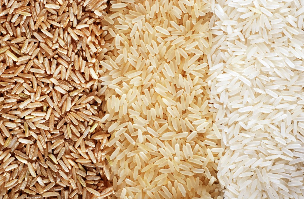 New rice varieties needed as climate change threatens