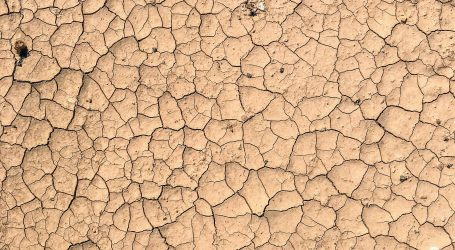 Drought confirmed as national disaster